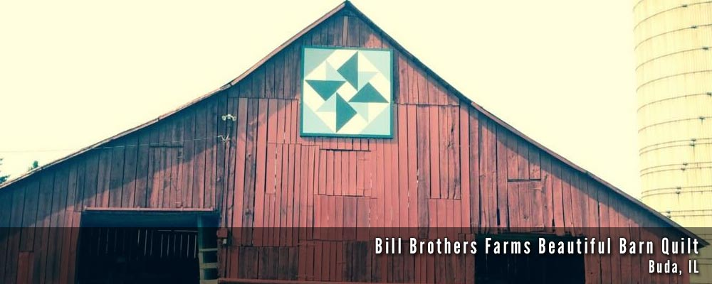 The Barn Quilts of Bureau County